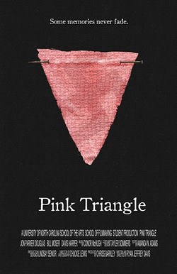 3. Pink Triangle