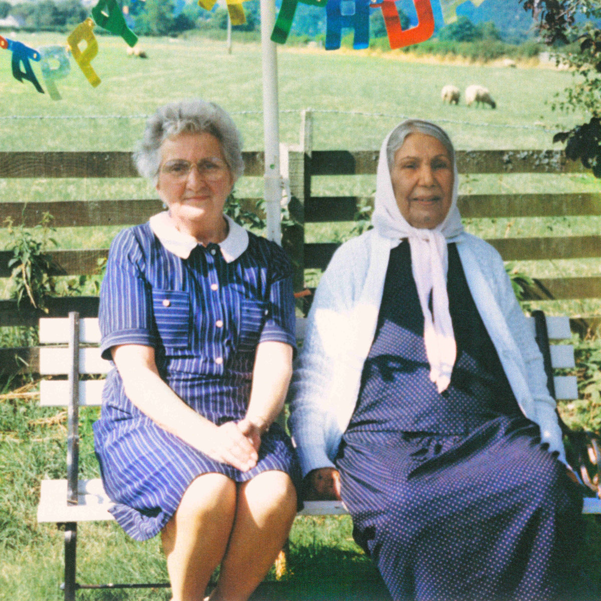 15. Dauwd - Theory Of Colours