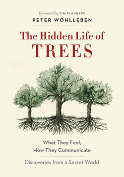 Peter Wohlleben - The Hidden Life Of