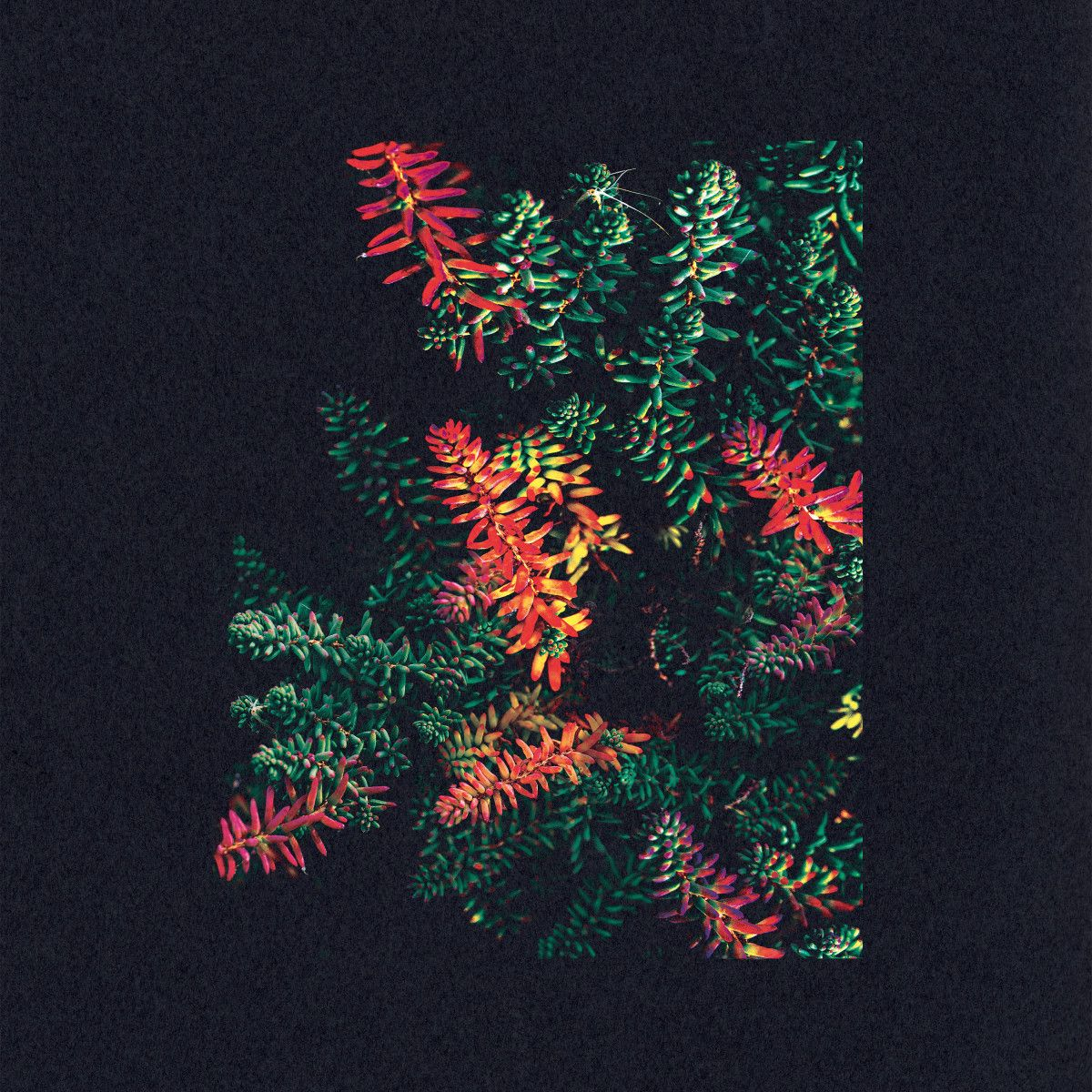 23. Dark Sky - Othona