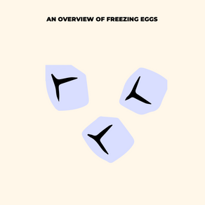 What happens when you Freeze your Eggs? A Brief Overview on Social Egg Freezing