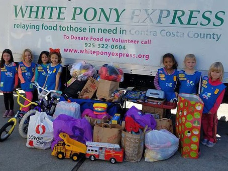 Daisy Girl Scouts Lead Toy Drive