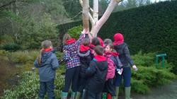 Year 3 & 4 at Rosemoor (Feb 15)