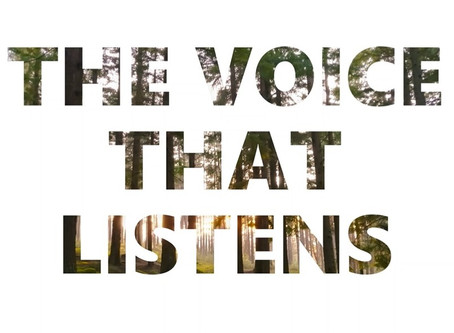 How The Voice That Listens was born?
