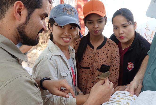 Bird research in Myanmar
