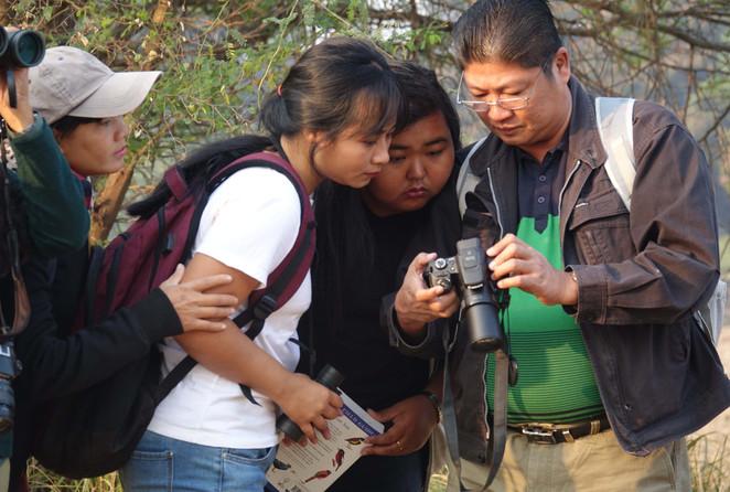 Learning to identify bird species