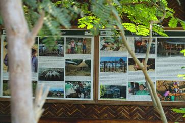 Hsithe visitor centre information boards