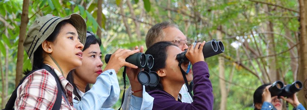 Training in bird survey techniques