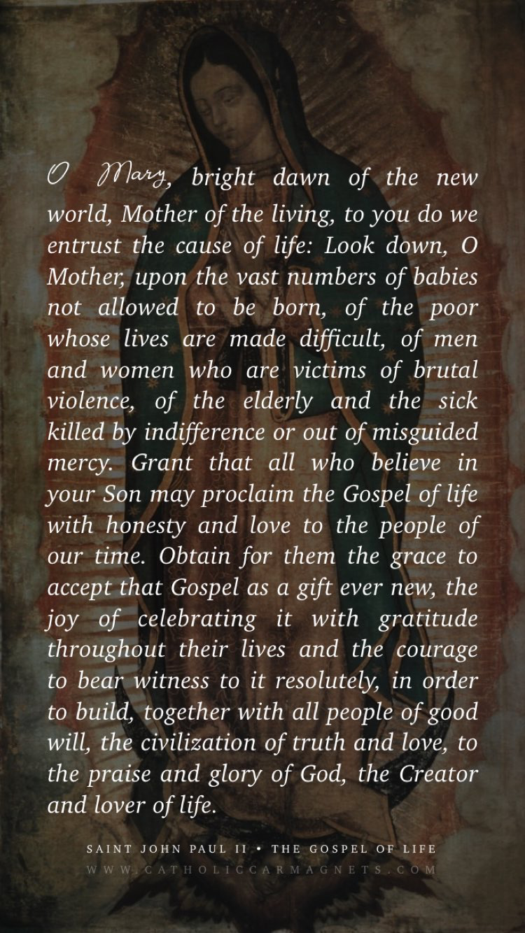 Free Our Lady of Guadalupe Phone Lock Screen - JPII Pro-Life Prayer