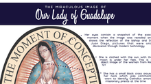 The Miraculous Image of Our Lady of Guadalupe - Part II