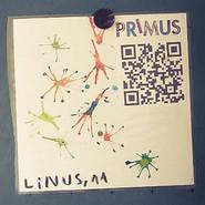 Linus 11 Jahre