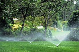 LawnIrrigation1.jpg