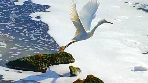 In flight-Santa Barbara