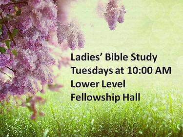 Ladies' Bible Study 2.jpg