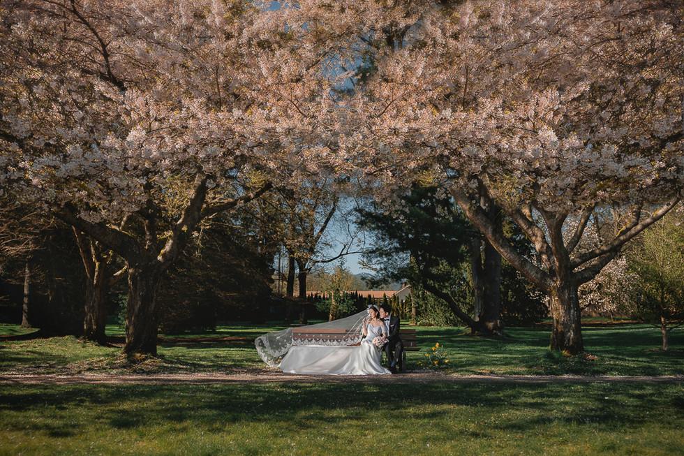 alvin sheng vancouver pre-wedding photographer 温哥华婚纱摄影师 035.jpg