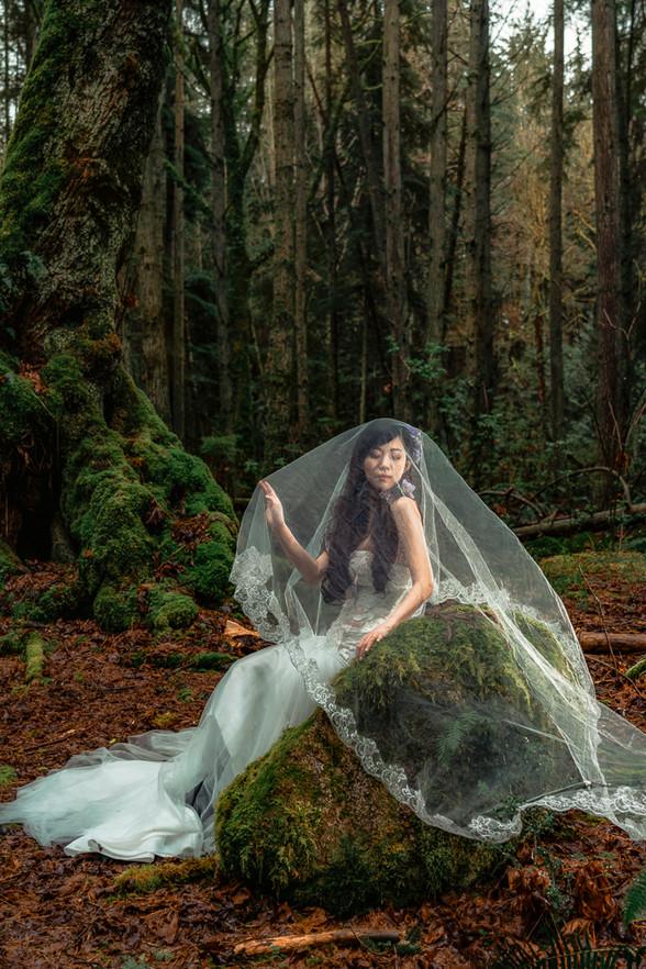 alvin sheng vancouver pre-wedding photographer 温哥华婚纱摄影师 012.jpg