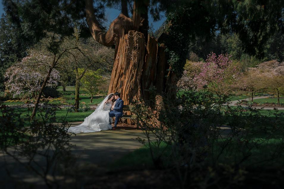 alvin sheng vancouver pre-wedding photographer 温哥华婚纱摄影师 028.jpg