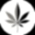 LogoMakr_63tk57.png