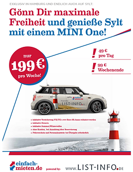 SYLT FLYER.png