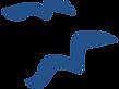 SummerSalt_Logo_Gulls_edited_edited.png