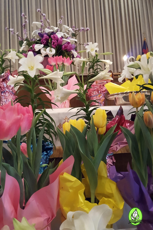 FCC_Easter17_15