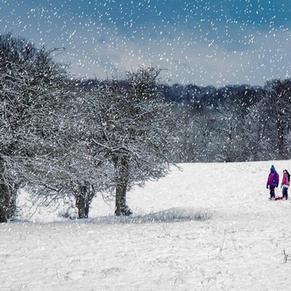Fun in the snow at Garrington- J.Newell