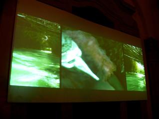 I Sing the Body Electric, Live Media Show, Teatro Manzoni, a cura di Valerio Dehò (Studio Azzurro, R