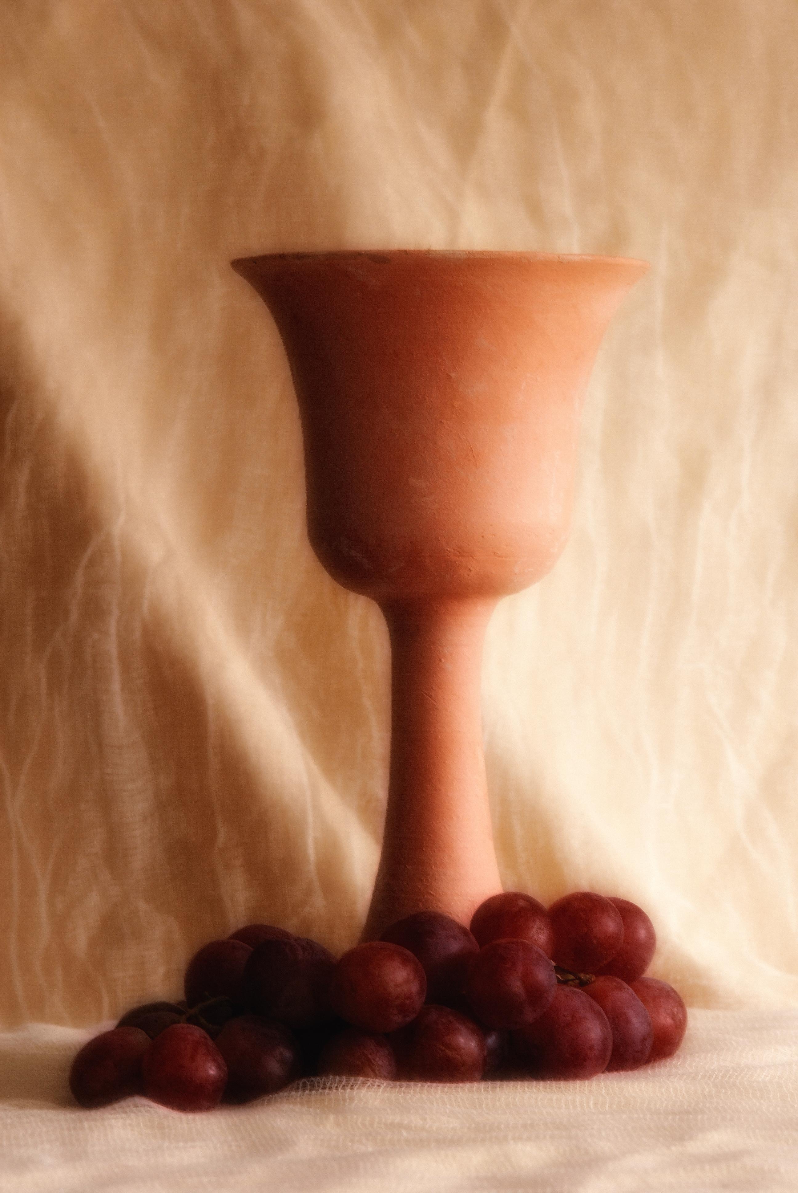 grapes029