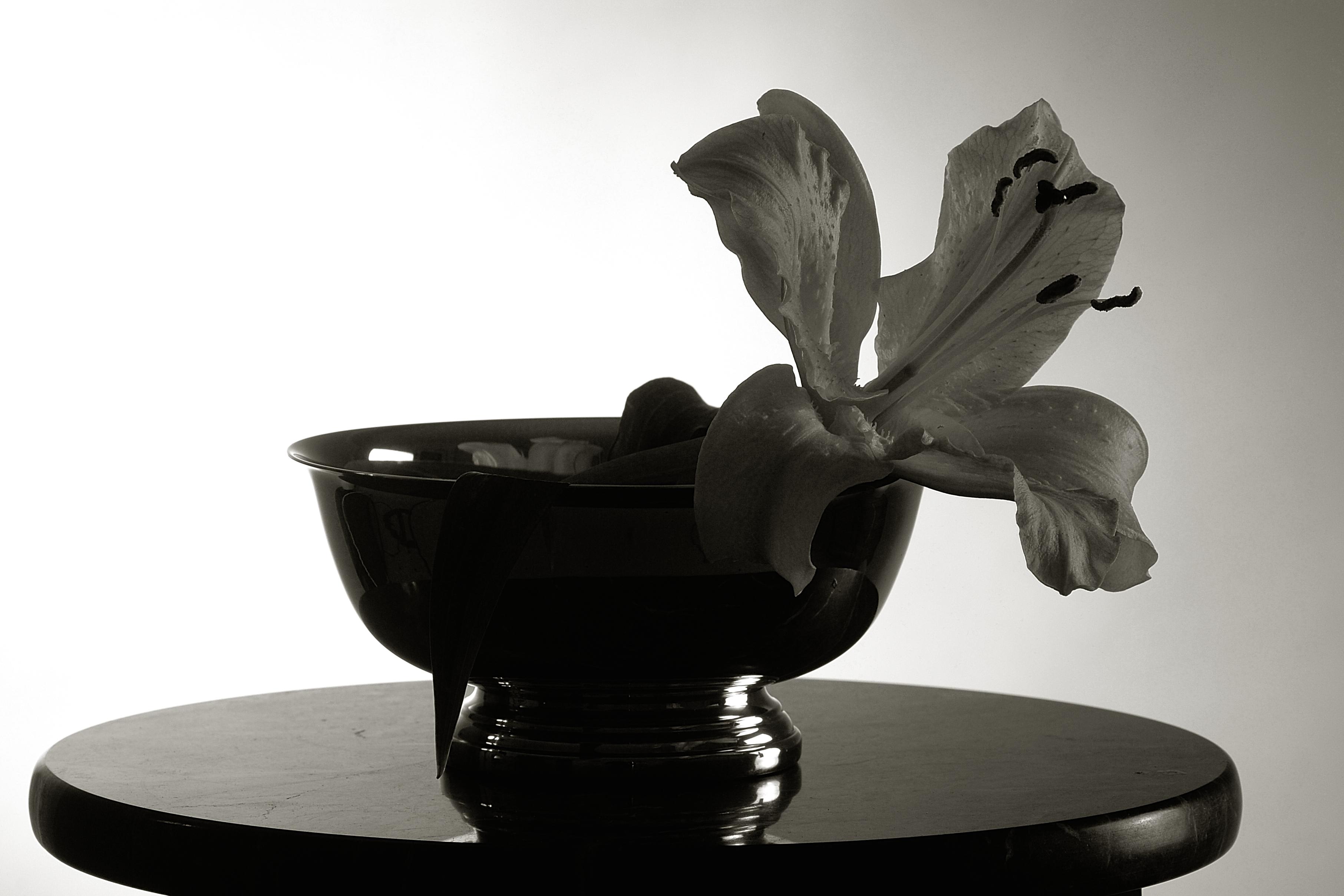 flowerbowel010