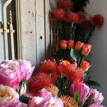 Flowers & French Door
