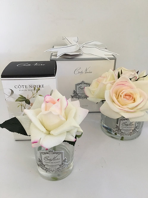 Cote Noire Rose Diffuser Pink Blush from $35