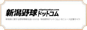 新潟野球ドットコム.jpg