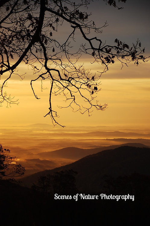 Shenandoah Sunrise - Shenandoah National Park