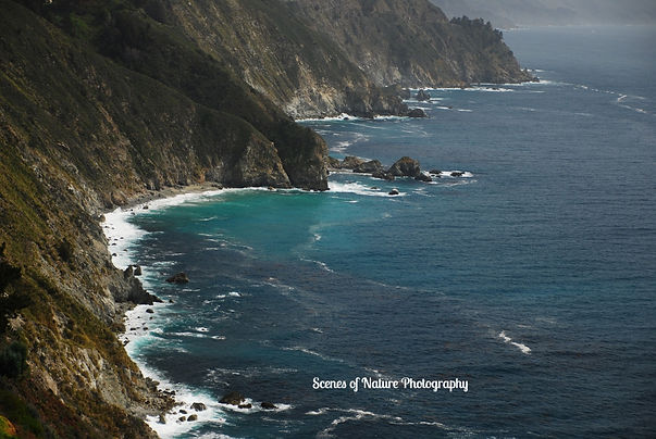 Pat - Big Sur 3-2015 DSC_0426_edited.jpg