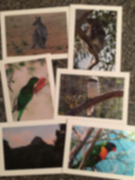 Australia cards for website.JPG