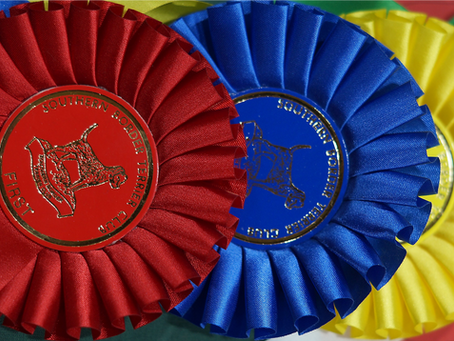 CHAMPIONSHIP SHOW - SATURDAY 18 SEPTEMBER  2021- ENTRY FIGURES