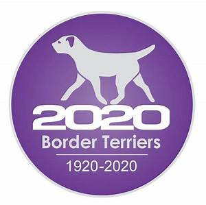BORDER TERRIERS 2020 – FURTHER POSTPONEMENT