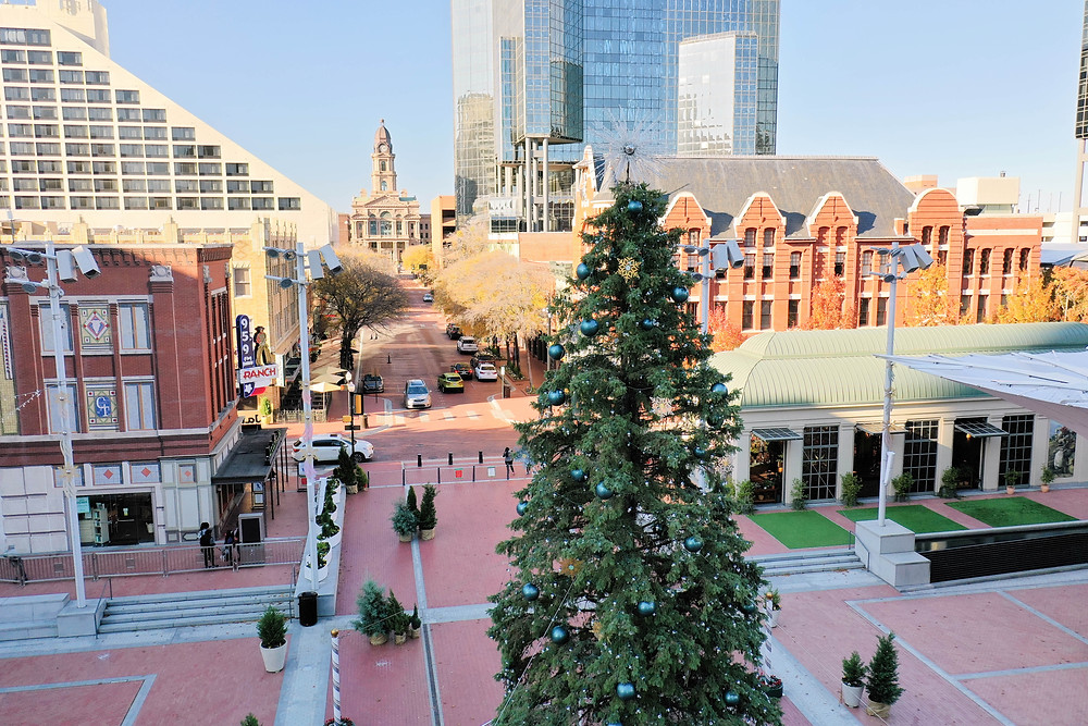 View of the Christmas Tree on Sundance Square Plaza in downtown Fort Worth with the Tarrant County courthouse in the background