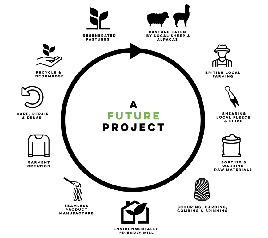 A-FUTURE-PROJECT-PROCESS.png