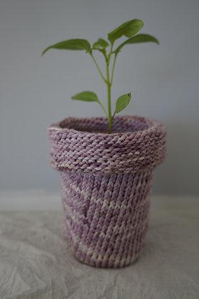 blackberry planter