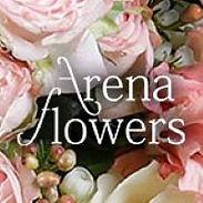 Arena NEW.jpg