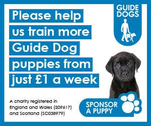 Guide Dogs image.jpg