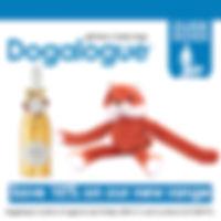 Dogalogue Image.jpg