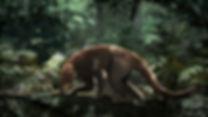 82_RoM_Loxolophus lowres.jpg
