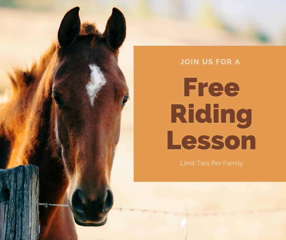 FREE Private Introductory Riding Lesson