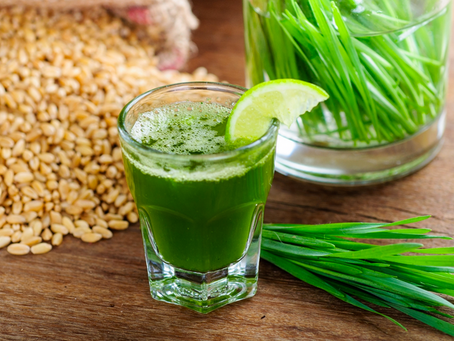 Healthy Eating: How to grow Wheat Grass