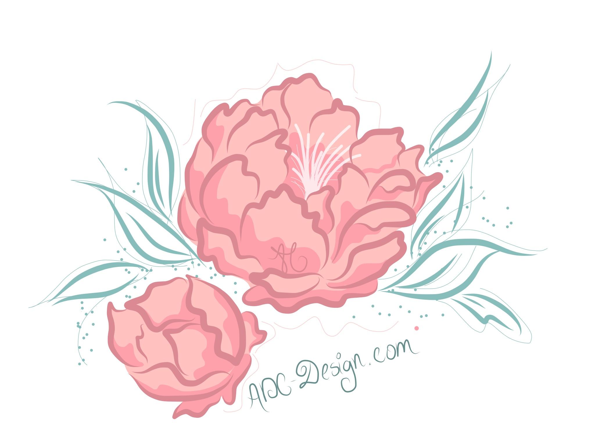 using Adobe Illustrator Draw