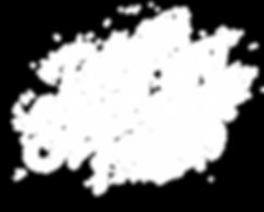 DSAF_logo_2019_white.png