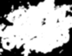 DSAF_logo_2020_white(web).png