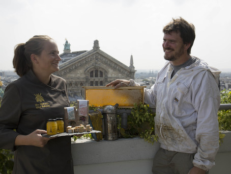 Les miels de Paris : sources d'inspiration